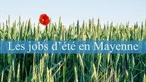 Job d'été Rose-Eva - France Bleu Mayenne
