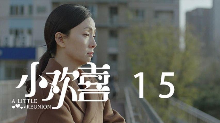 小歡喜 15  A Little Reunion 15(黃磊、海清、陶虹等主演)