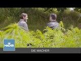 Die Macher: Hanf aus der Uckermark