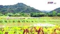 Đại Thời Đại Tập 129 - đại thời đại tập 130 - Phim Đài Loan - THVL1 Lồng Tiếng - Phim Dai Thoi Dai Tap 129