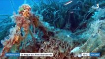 Méditerranée : le fléau des filets de pêche abandonnés
