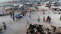 Kurban pazarlarında yoğunluk var, alıcı yok... Kurban pazarı havadan görüntülendi