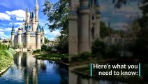 Strollers at Disney World  What's Allowed & What's Not