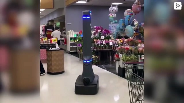 The deployed assistant robots in US stores put clients nervous