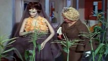 Green Acres Season 1 Episode 2 Lisa's First Day On The Farm