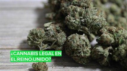 El cannabis puede ser legal en Reino Unido