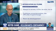 Intoxication au plomb autour de Notre-Dame: quels sont les risques?