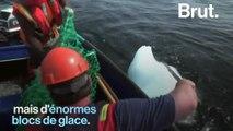 Rencontre avec un chasseur d'iceberg canadien