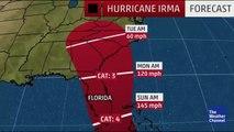 Major Hurricane Hits Big Cat Rescue