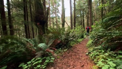 Apple ASMR — Crunching sounds on the trail — Shot on iPhone