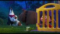 The Secret Life Of Pets 2 Film - Parenting Advice