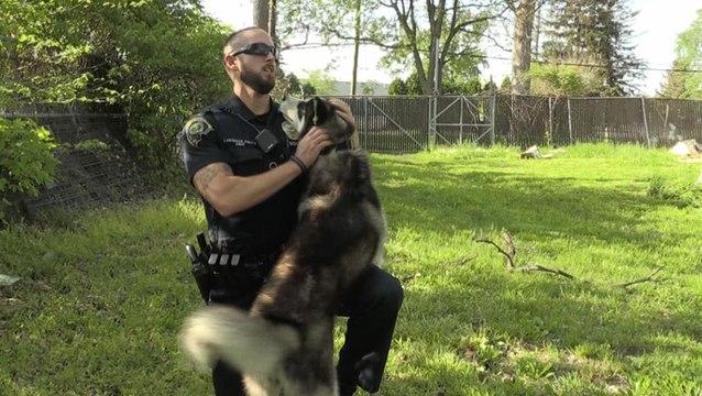 Live PD: A Cop's Best Friend