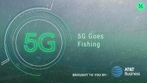 ¿Por qué estos salmones están conectados a la red 5G?