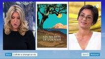 Lèpre des oliviers : le combat d'Emilie Borel, oléicultrice en Corse et autrice