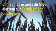 Climat : les experts du GIEC alertent sur l'épuisement des terres