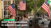 Los republicanos temen perder los suburbios debido a las armas