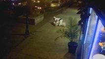 Un homme héroïque a protégé sa petite amie contre le tireur de Dayton