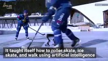 Check Out This Roller Skating Robot That Can Also Ice Skate!