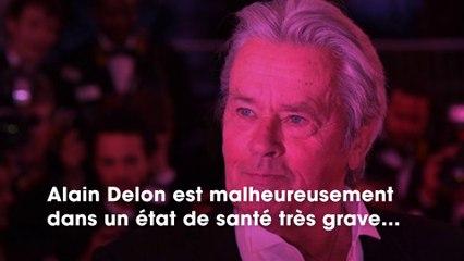 Capucine Anav répond au commentaire négatif d'un internaute sur l'état de santé d'Alain Delon