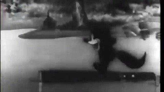 Bosko's Fox Hunt, 1931
