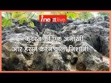 Indian Fossil Park bigger than Yellowstone : Amazing History of SALKHAN FOSSILS PARK Uttar Pradesh