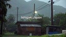 Le typhon Lekima souffle sur le Japon