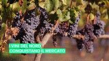 I paesi del nord conquistano l'industria del vino