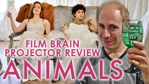 Projector: Animals (2019) (REVIEW)