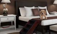 سلّم صغير يوضع بجانب السرير مخصص للحيوانات الأليفة!