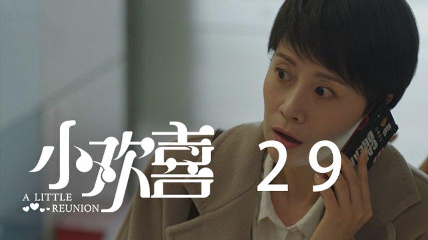 小歡喜 29  A Little Reunion 29(黃磊、海清、陶虹等主演)