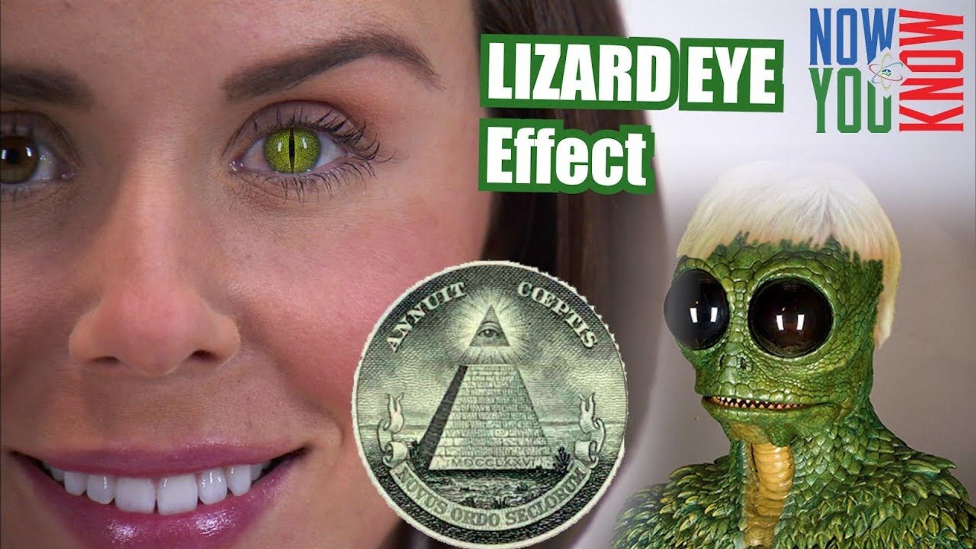How to Create a Reptilian Eye Effect in Adobe Premiere - VLearning