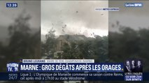 """Orages dans la Marne: """"Il y a eu des dégâts dans les cultures, des arbres ont été arrachés"""" (maire de Frère-Champenoise)"""