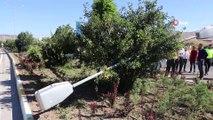 Sivas'ta iki otomobil çarpıştı, faciadan dönüldü