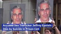 Pedophile Jeffrey Epstein's Sudden Death
