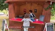 Vosges : le théâtre de la forêt