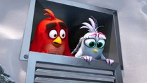 The Angry Birds Movie 2: Tweets (Spot)