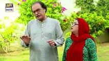 Bulbulay Se 2  Ep 12  11th August 2019  ARY Digital Drama