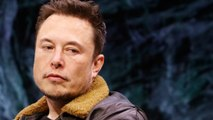 Why Tesla Should Back Away From The Stock Market