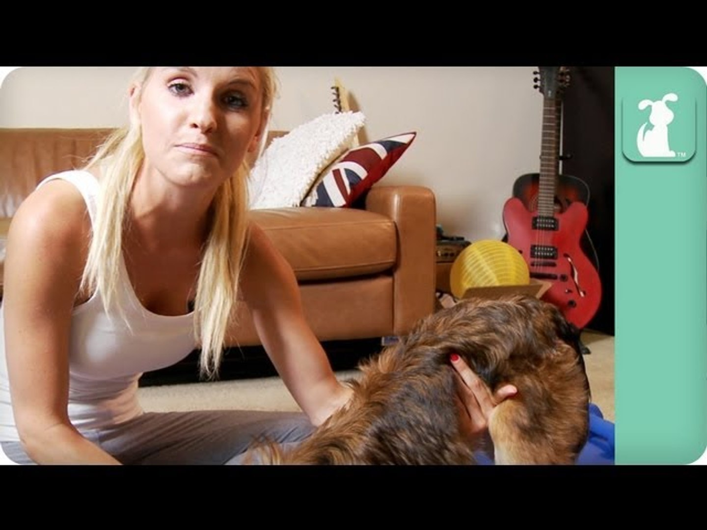 Yoga With Your Pet - Pet Fit Tips