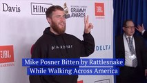 Mike Posner's Walk Across America And A Rattlesnake