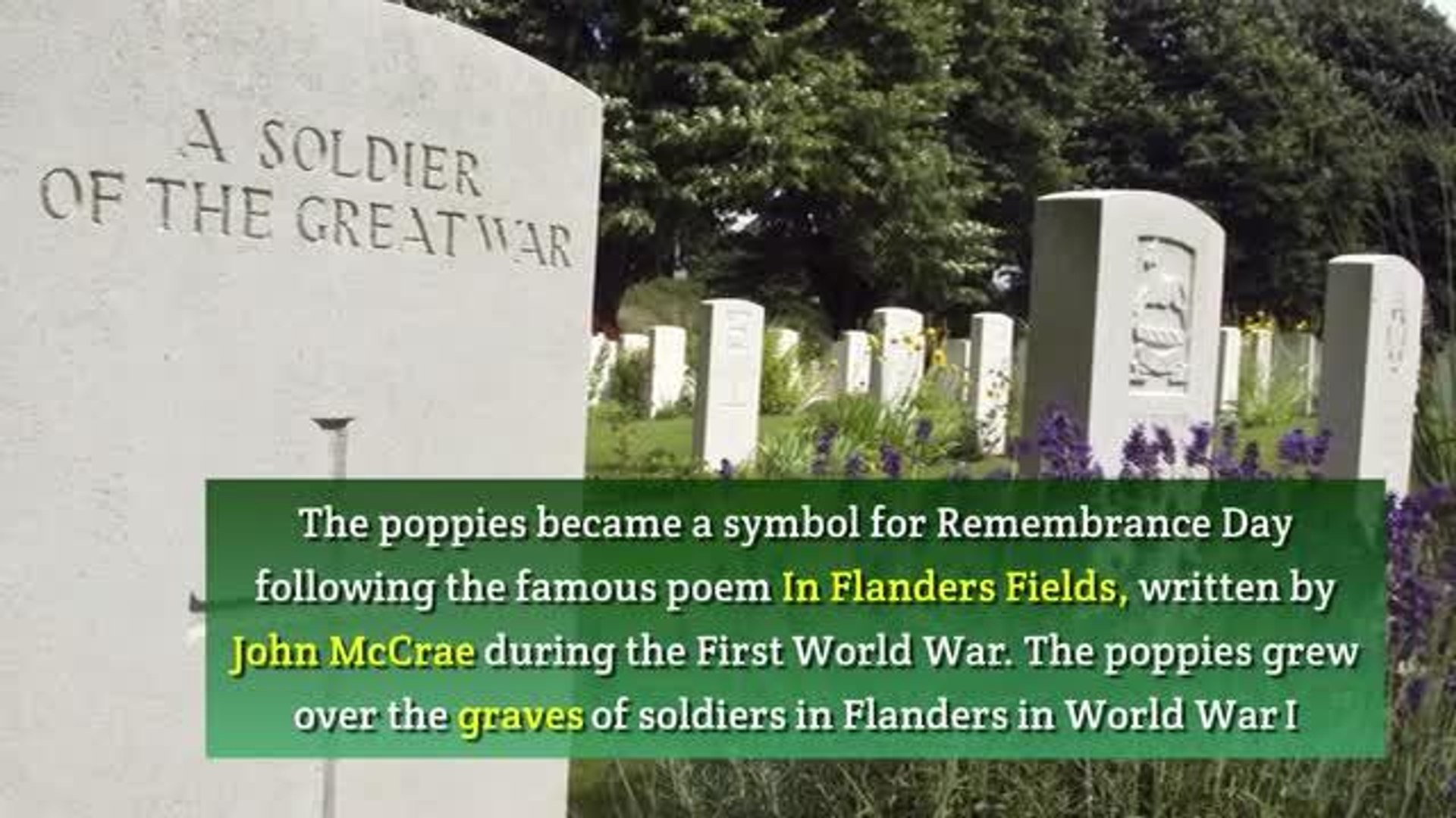 VIDEO: Remembrance Day