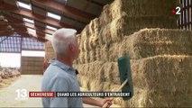 Sécheresse : l'entraide entre agriculteurs