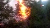 Kütahya'da ormanlık alan alev alev böyle yandı