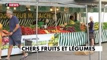 Le Carrefour de l'info (20h-21h) du 12/08/2019