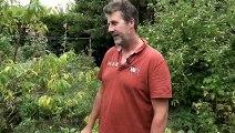 #Jardinage / La permaculture, c'est quoi ?