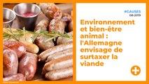 Environnement et bien-être animal : l'Allemagne envisage de surtaxer la viande