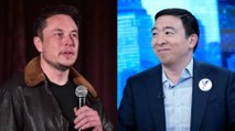Elon Musk Is Supporting Andrew Yang for President