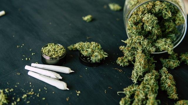 CannTrust Breaches Canadian Health Regulations on Cannabis