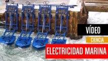 [CH] Electricidad a partir de las olas del mar