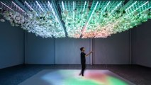 This immersive exhibit uses your senses to change its reality — Future Blink